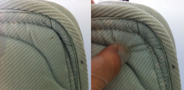 bed bug mattress inspection