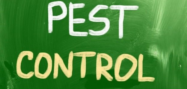 pest control company sign